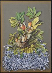 """Surgical Nest 1 (15.5"""" x 10.5"""")"""